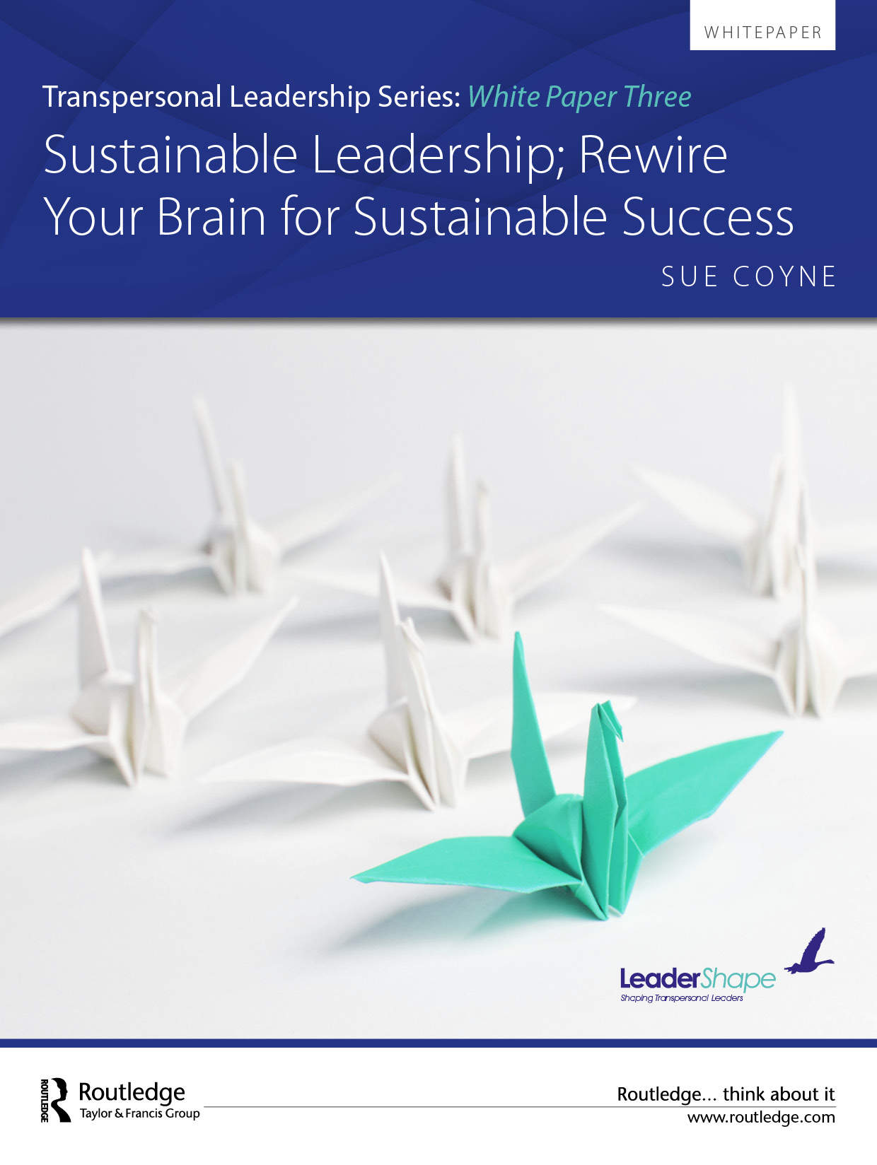 Sustainable Leadership, Rewire Your Brain for Sustainable Success